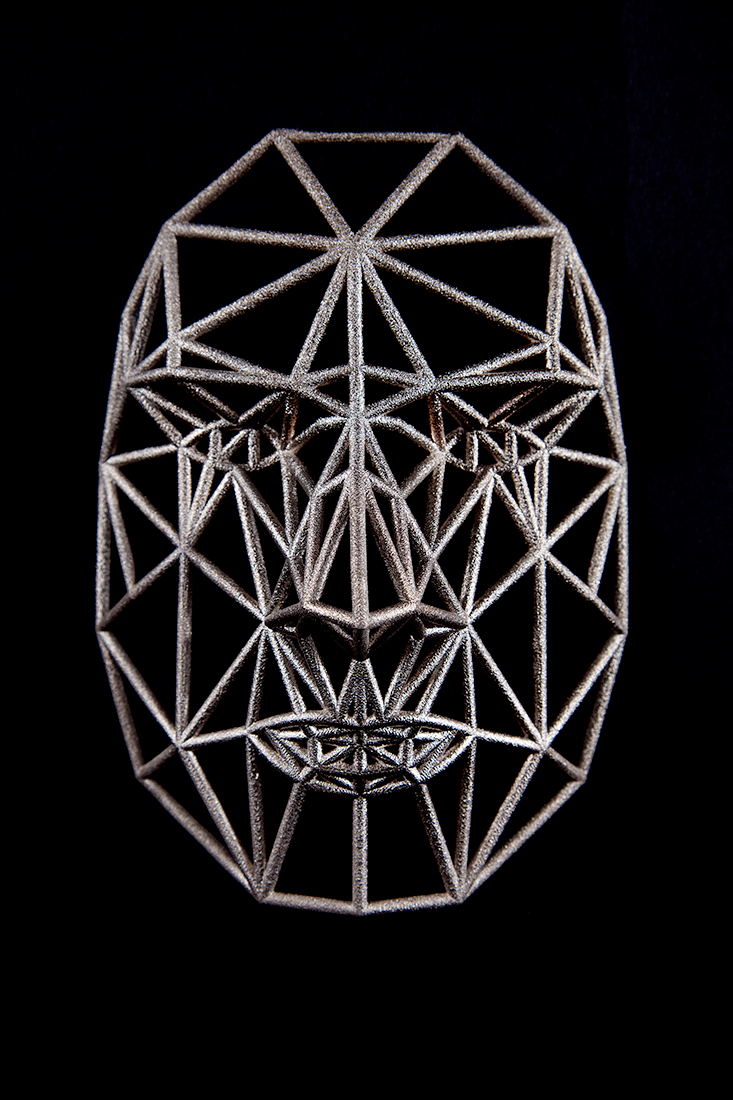 Face Cage 3